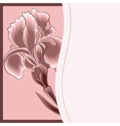 congratulation vector image vector image
