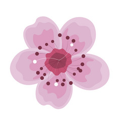 cute summer flower icon vector image