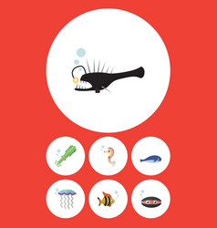 Flat icon nature set of cachalot scallop medusa vector