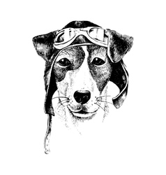 Hand drawn dressed up dog aviator vector
