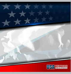 Usa color flag texture vector