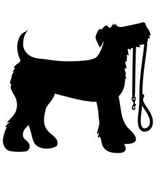 Airedale terrier leash vector