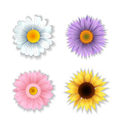 Set of paper art flowers vector