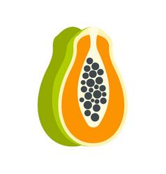 sliced fresh papaya icon flat style vector image vector image