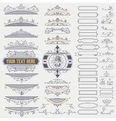 Kit of Vintage Elements for Banners Invitations vector image vector image
