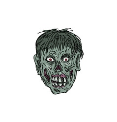 Zombie Skull Head Drawing vector image vector image