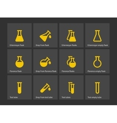 Florence and erlenmeyer flasks icons vector image