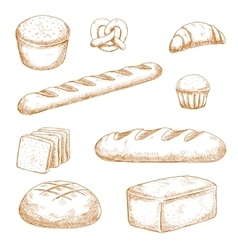 Bakery pastry and buns sketches vector