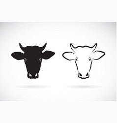 cow head design on white background farm animal vector image vector image