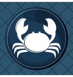 Flat about crab design vector image