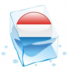 frozen button flag of luxembourg vector image vector image