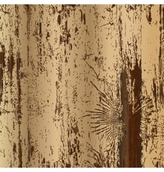 Wood texture with trace of bark beetles vector