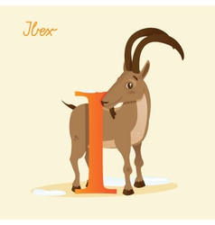 I for Ibex vector image