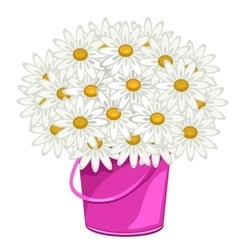 Large bouquet of daisies in pink pot flowers vector