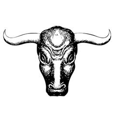 Bull head 1 vector