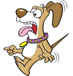 Cartoon of a scared dog pointing vector image vector image