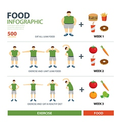 Exercise and diet infographic vector
