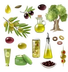 Olive Cartoon Set vector image vector image