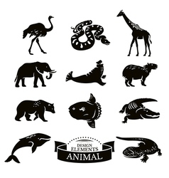 Set of animal icons vector