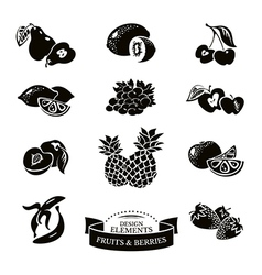Icon set of fruits and berries vector