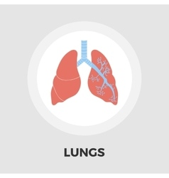 Lungs flat icon vector image