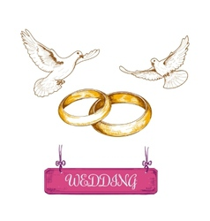 Wedding rings and pigeons vector