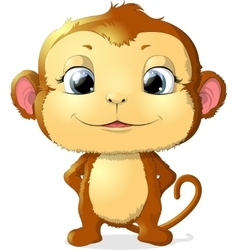 Monkey sitting on a white background vector