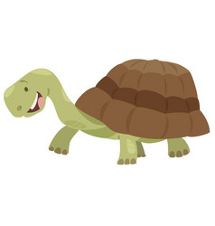 cute turtle animal character vector image vector image