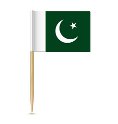 pakistan flag toothpick on white background vector image vector image