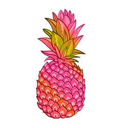 pineapple creative trendy art poster vector image