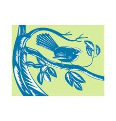 New zealand fantail bird vector