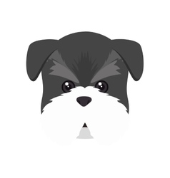 Schnauzer dog cartoon vector