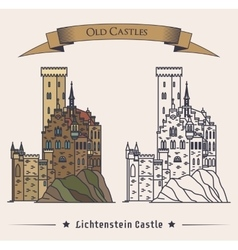 Lichtenstein or fairy tale castle on mountain vector
