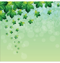 A special paper with green background vector image