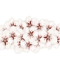 Sakura flowers floral banner for springtime vector