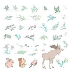 Set of Summer Forest Design Elements vector image vector image