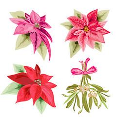 Poinsettias and mistletoe set vector