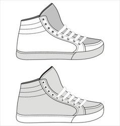 sports footwear vector image