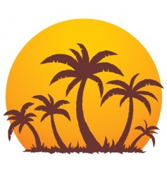 Palm trees and summer sunset vector