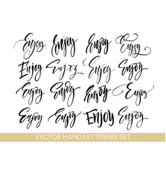 enjoy handwriting calligraphy set hand drawing vector image