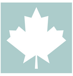Maple leaf the white color icon vector