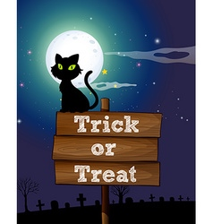 Black cat sitting on the sign at night vector