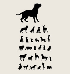 Dog Set Silhouette vector image