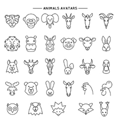 Animal heads in thin line style icons set vector