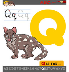 letter q with cartoon quoll vector image
