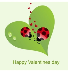 Natural Valentines Day background vector image