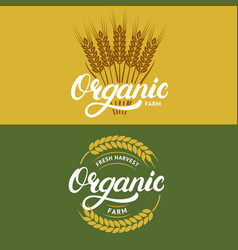 set of organic farm hand written lettering logos vector image