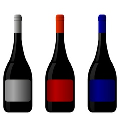 bottles of wine vector image