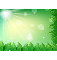 Green leaves in sunlight background vector