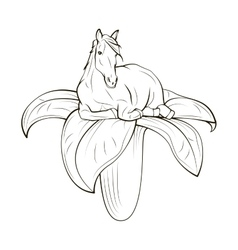 Horse on flower concept hand draw vector
